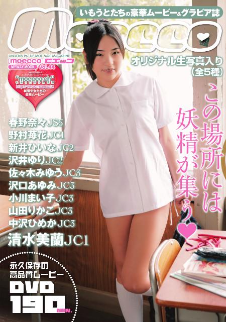 moecco(モエッコ) vol.44 動画+PDF書籍セット  | お菓子系.com