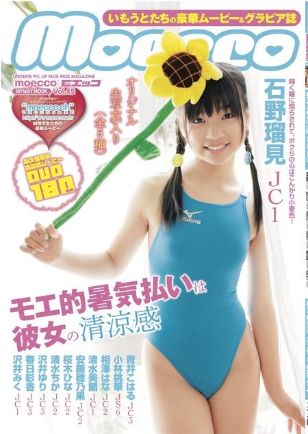 moecco(モエッコ) vol.45 動画+PDF書籍セット  | お菓子系.com