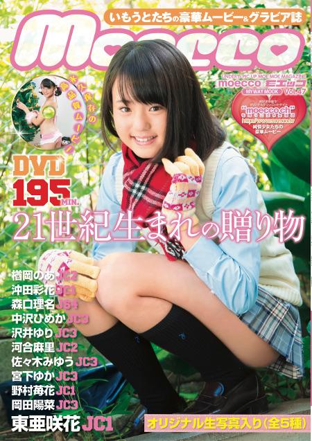 moecco(モエッコ) vol.47動画+PDF書籍セット  | お菓子系.com