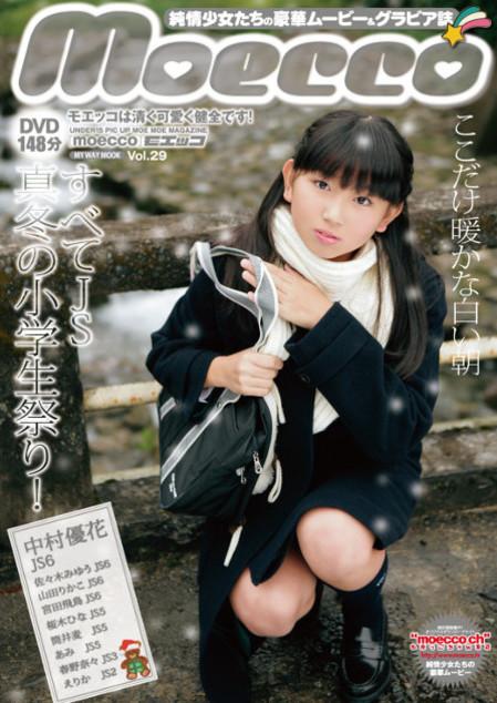 moecco(モエッコ) vol.29 動画+PDF書籍セット | お菓子系.com