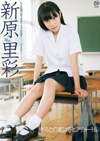 【新原里彩】新原里彩 キミとの恋は5センチメートル
