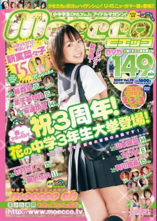 【新実菜々子】moecco(モエッコ) vol.19 動画+PDF書籍セット
