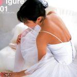 【】リトル・ヴィーナス総集編 Vol.1 LittleFigur 01